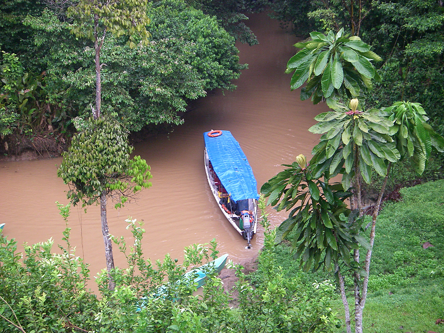 The Napo River to the Jungle Lodge