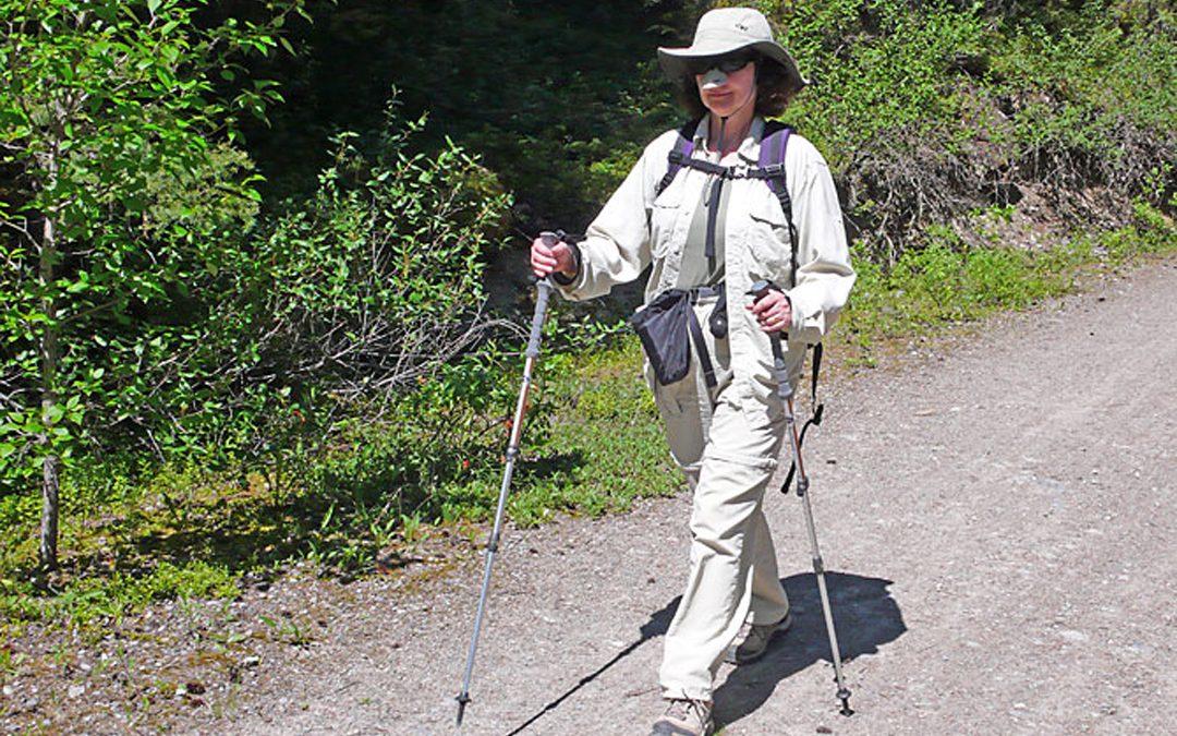 Healthy Hiker