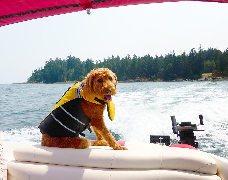 Makita in her life jacket