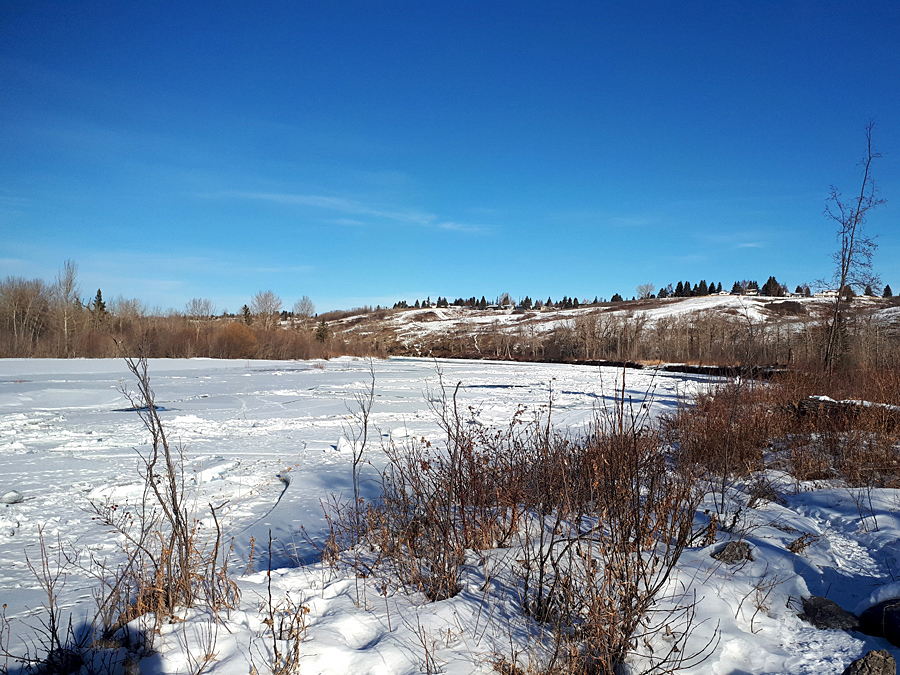 Bow River in winter